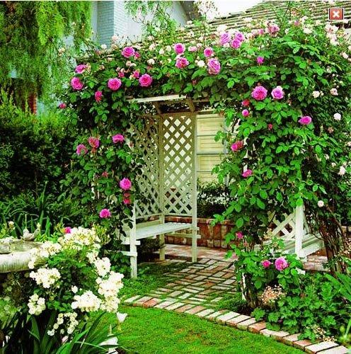 Украшение беседки цветами