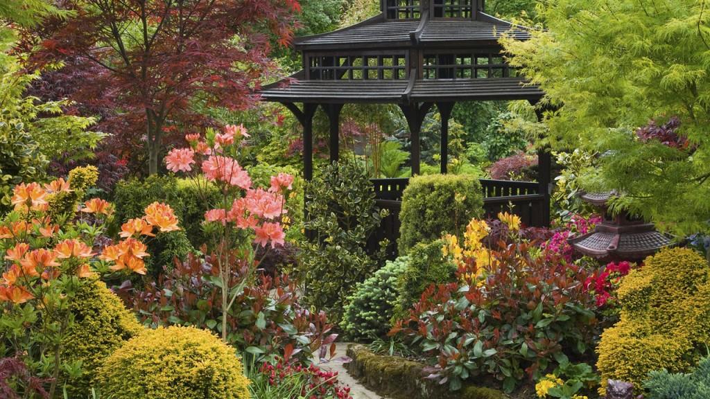 Буйство красок в растительном окружении беседки