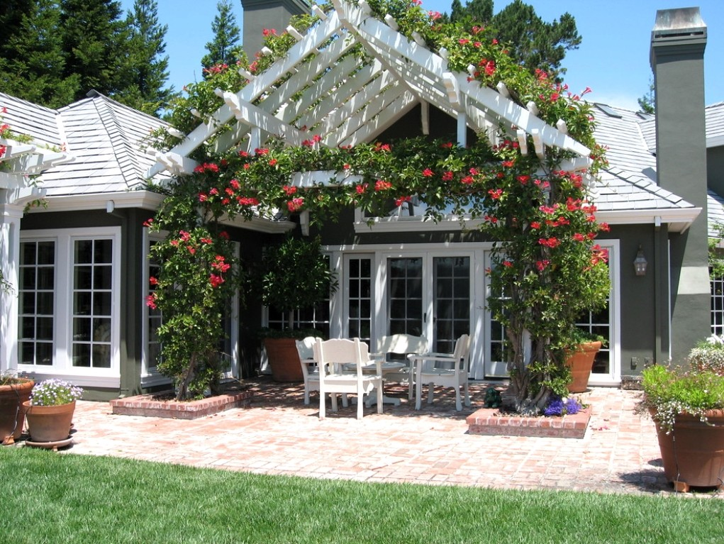 Пергола с вьющимися растениями на террасе перед домом