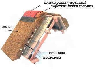 Схема кровли из камыша