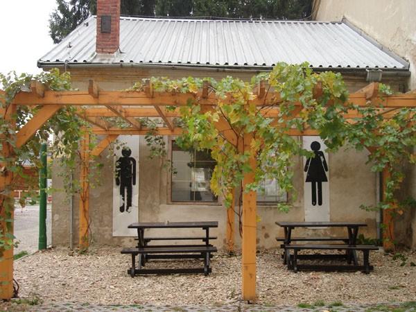 Беседка под виноград у дома