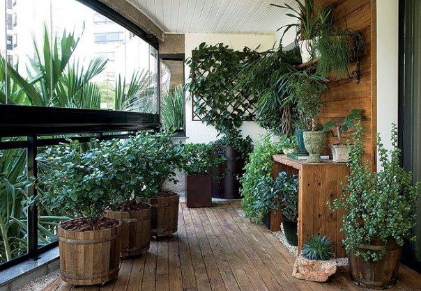 Украшение веранды растениями