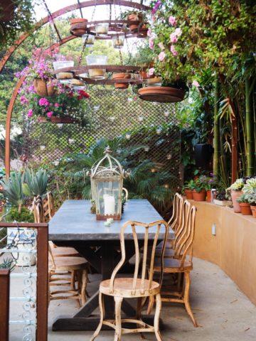 Живые растения на летней кухне
