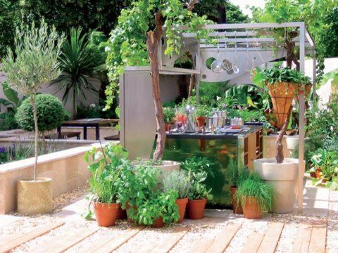 Живые растения оживляют холодный металл кухонных фасадов