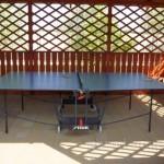 Теннисный стол в беседке: как установить