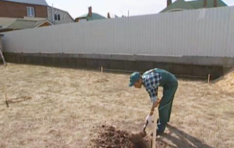 Выкопайте лунки под столбики с шагом в 2 метра