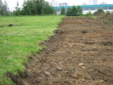 Для удаления растительного слоя обычно достаточно снять 5-10 сантиметров грунта