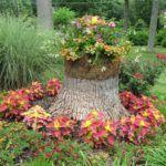 Пенёк от спиленного дерева – отличное основание для цветника